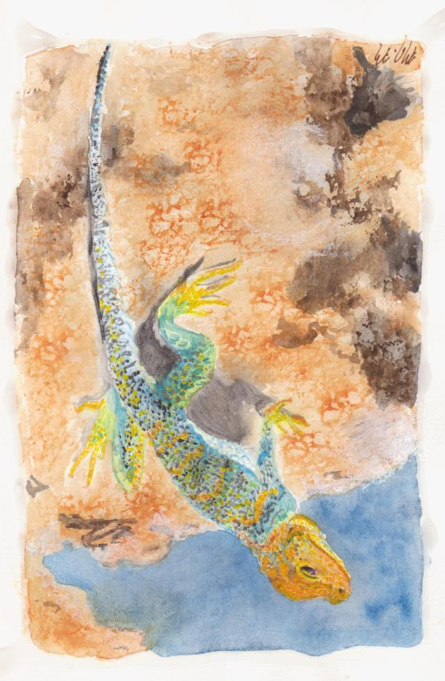Desert Lizard watercolor painting by Marie Mason