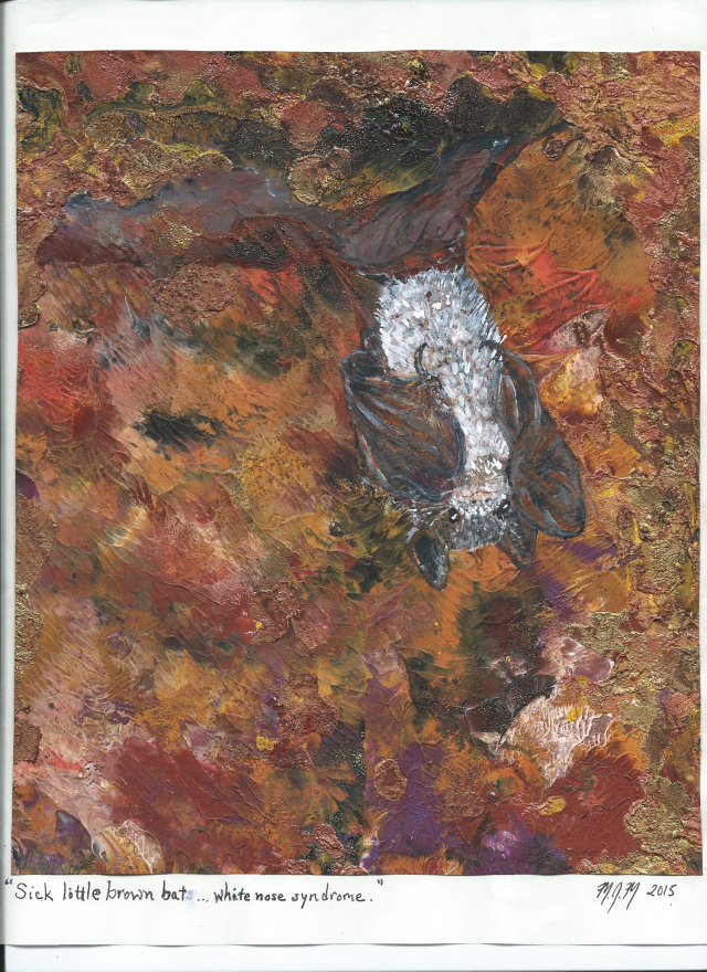 A painting by Marius Mason of a brown bat with white nose syndrome.